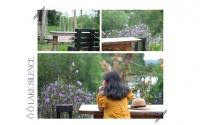 Đến Quảng Bình phải check-in 3 quán cafe ngắm trọn thiên nhiên này