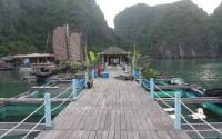 Đến Vung Viêng (Hạ Long) - một trong những làng chài đẹp nhất thế giới