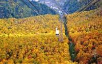Hướng dẫn chi tiết đi chiêm ngưỡng lá phong Hokkaido