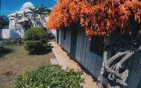 'Ngôi Nhà Phủ Hoa' tại Núi Rừng Bảo Lộc bạn đã checkin ở đây chưa ?