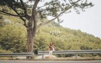 Danh sách 5 cây 'Cô Đơn' làm giới trẻ mê du lịch muốn gặp ngoài thật