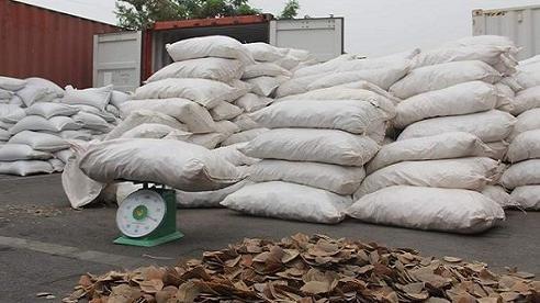 Bắt giữ hơn 8 tấn vảy tê tê tại cảng Vip Green Hải Phòng