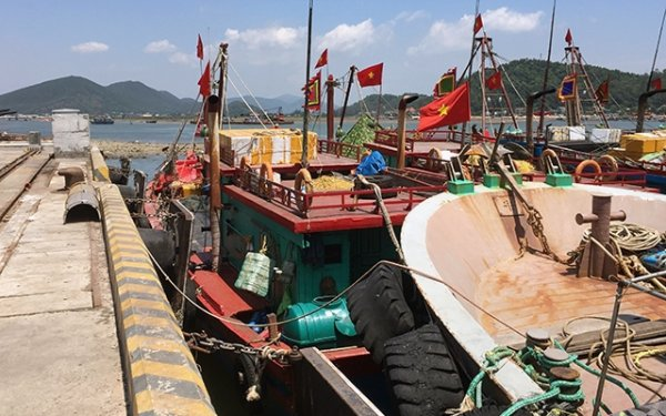 Xử lý dứt điểm tình trạng tàu cá neo đậu trái phép tại cảng Cửa Lò
