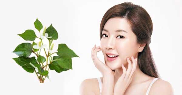 Đây là ba loại nguyên liệu được các cô gái Hàn dùng thay mỹ phẩm để chăm sóc da